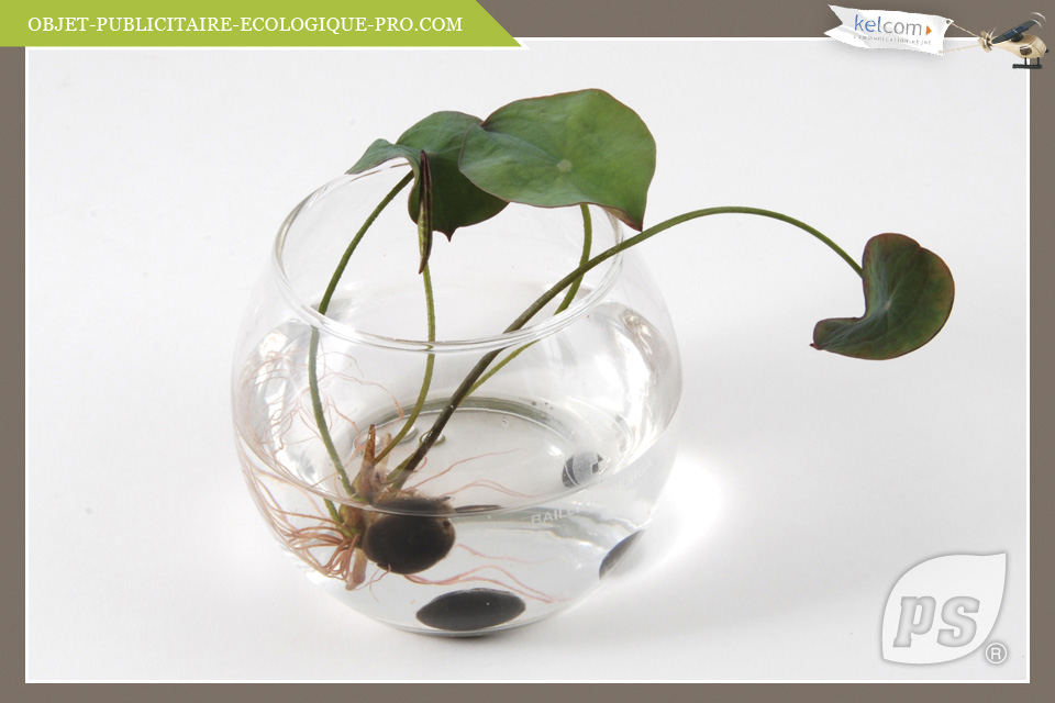 lotus objets publicitaires cadeau entreprise objets personnalis e by kelcom des objets. Black Bedroom Furniture Sets. Home Design Ideas