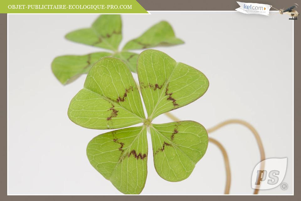 Tr fle 4 feuilles porte bonheur objets publicitaires cadeau entreprise objets - Plante d interieur porte bonheur ...
